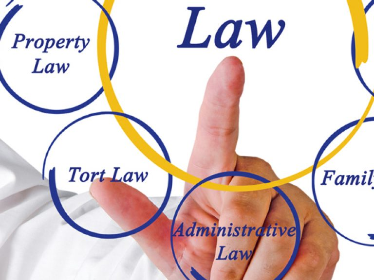 Thumbnail for Sustainability of Common Law