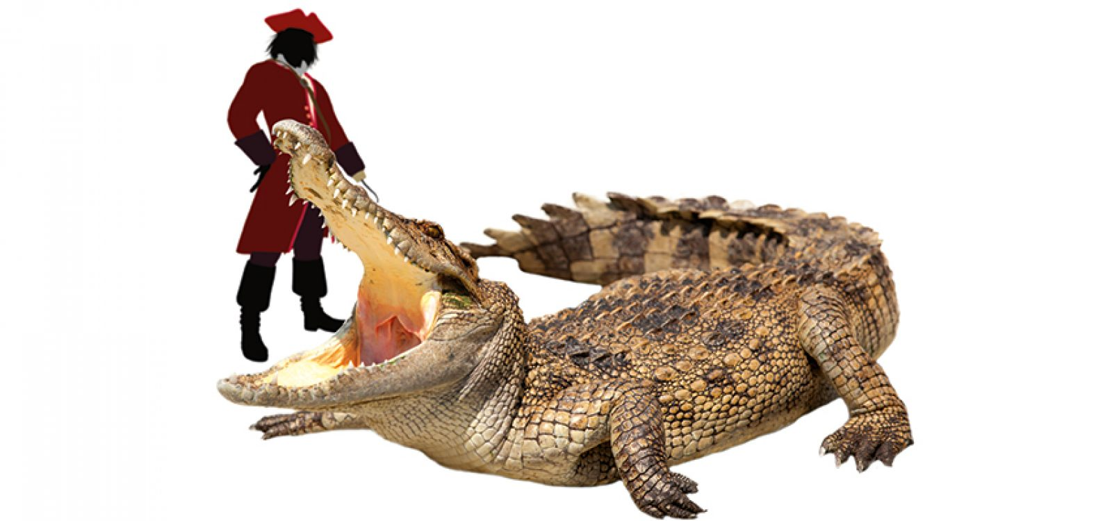 Never Smile at a Crocodile – The Group Risk Story