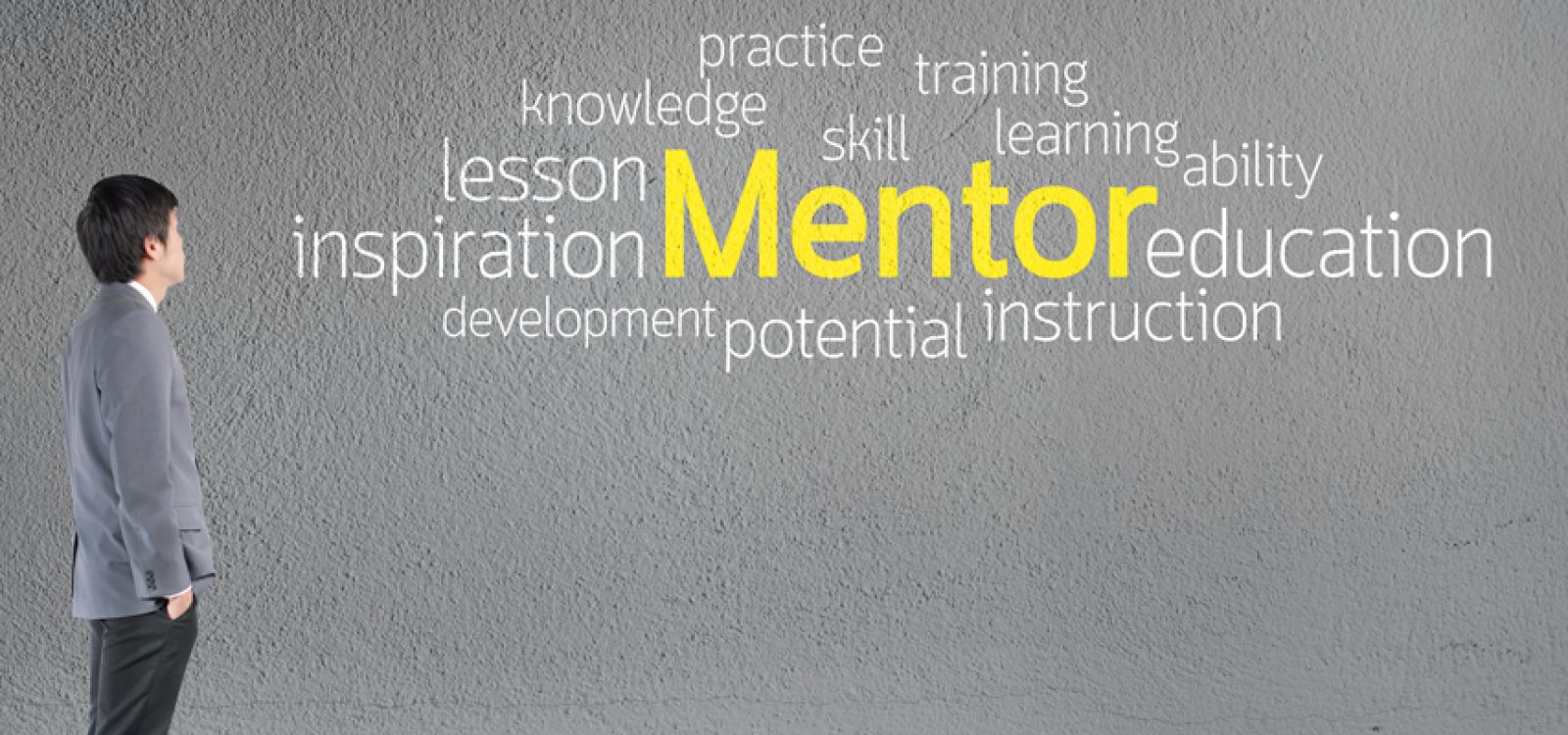 Mentor Skills – a Practical Example