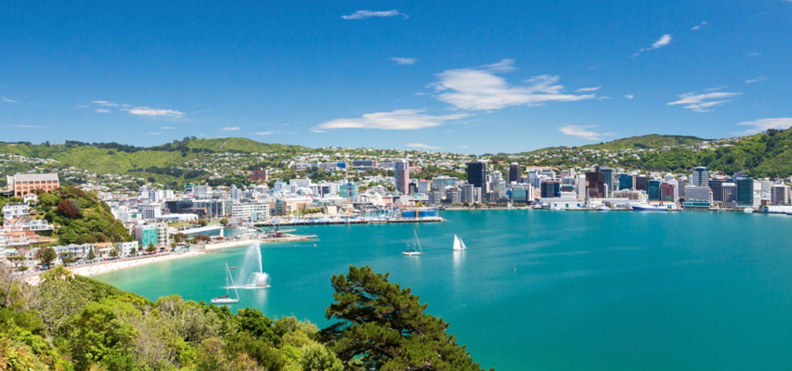 Australasia CPD Tour – the New Zealand leg