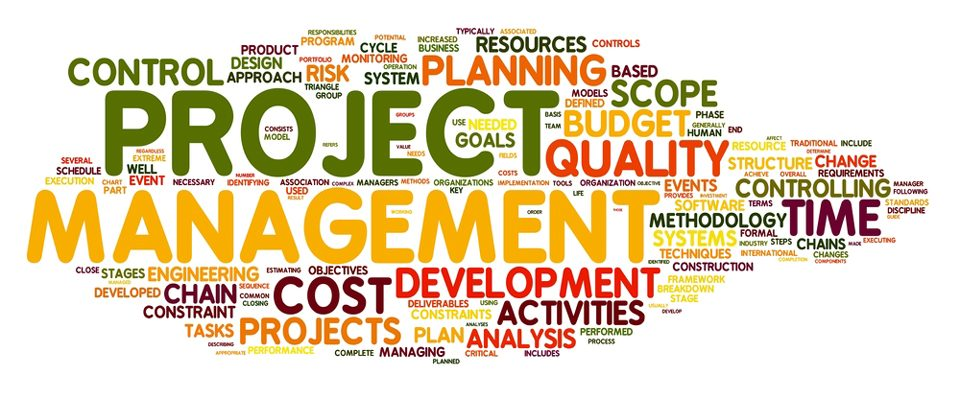 Project Management Skills  Your Career  Digital