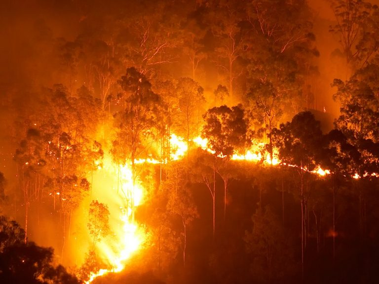 Thumbnail for Insuring the inferno: addressing bushfire risk in a changing climate
