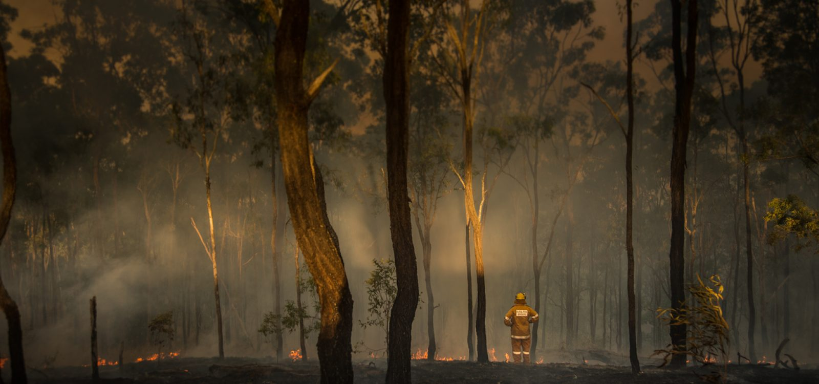 Impact of bushfires on the life insurance industry