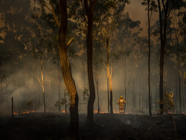 Thumbnail for Impact of bushfires on the life insurance industry