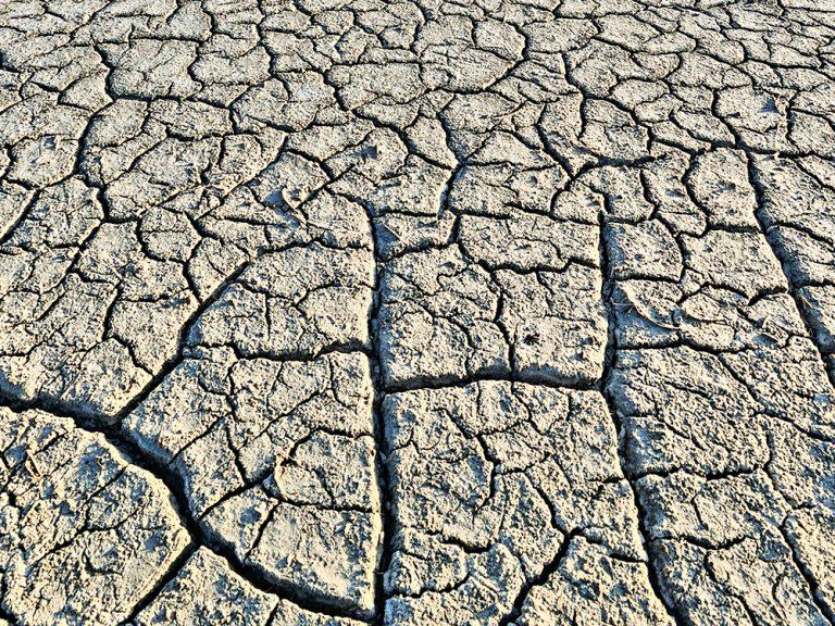 Thumbnail for Climate Change Scenario Analysis