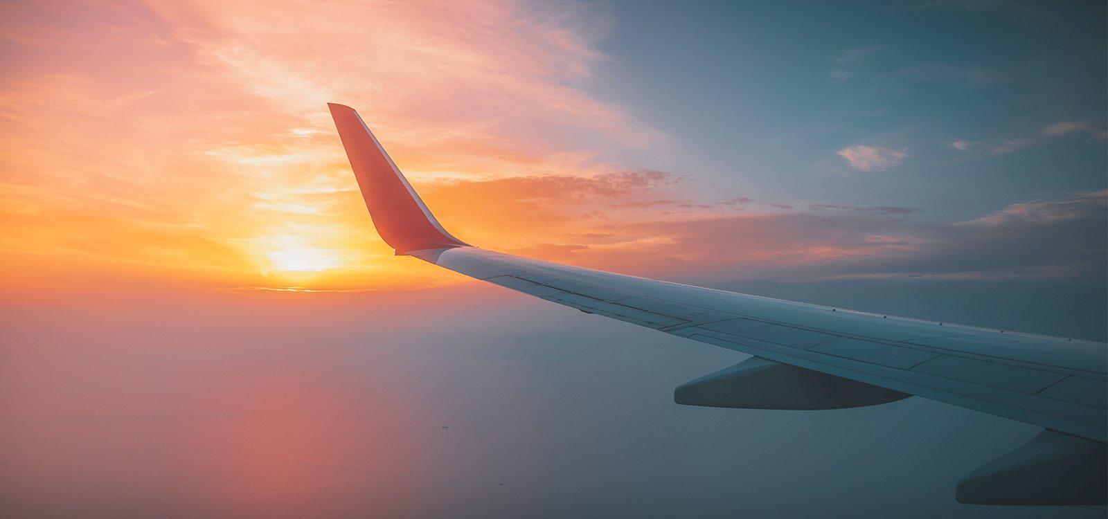 Travel Insurance – Fight or Flight