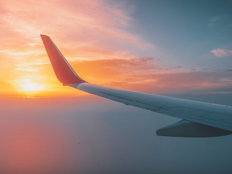 Thumbnail for Travel Insurance – Fight or Flight