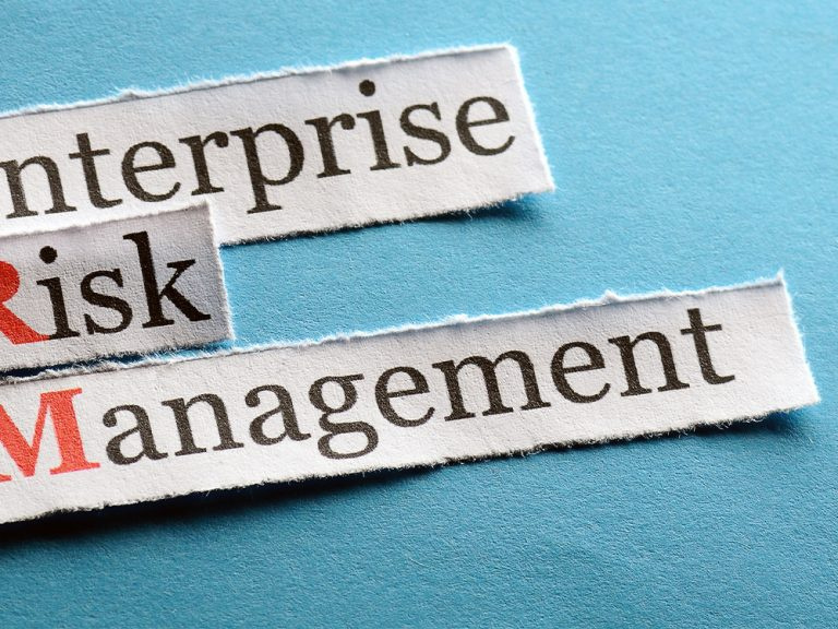 Thumbnail for A global perspective on Enterprise Risk Management