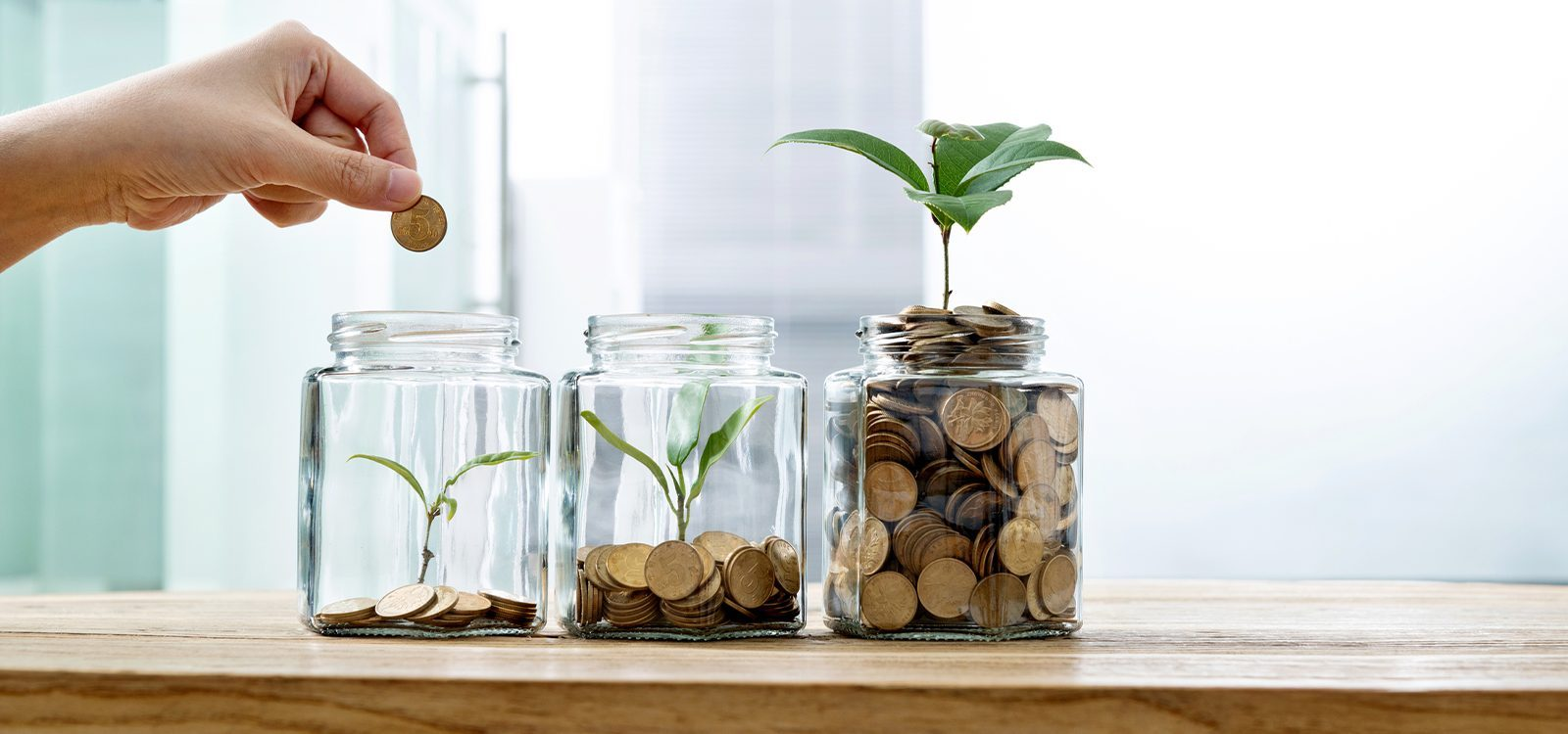 """Solutions to provide """"attractive"""" lifetime group annuities"""
