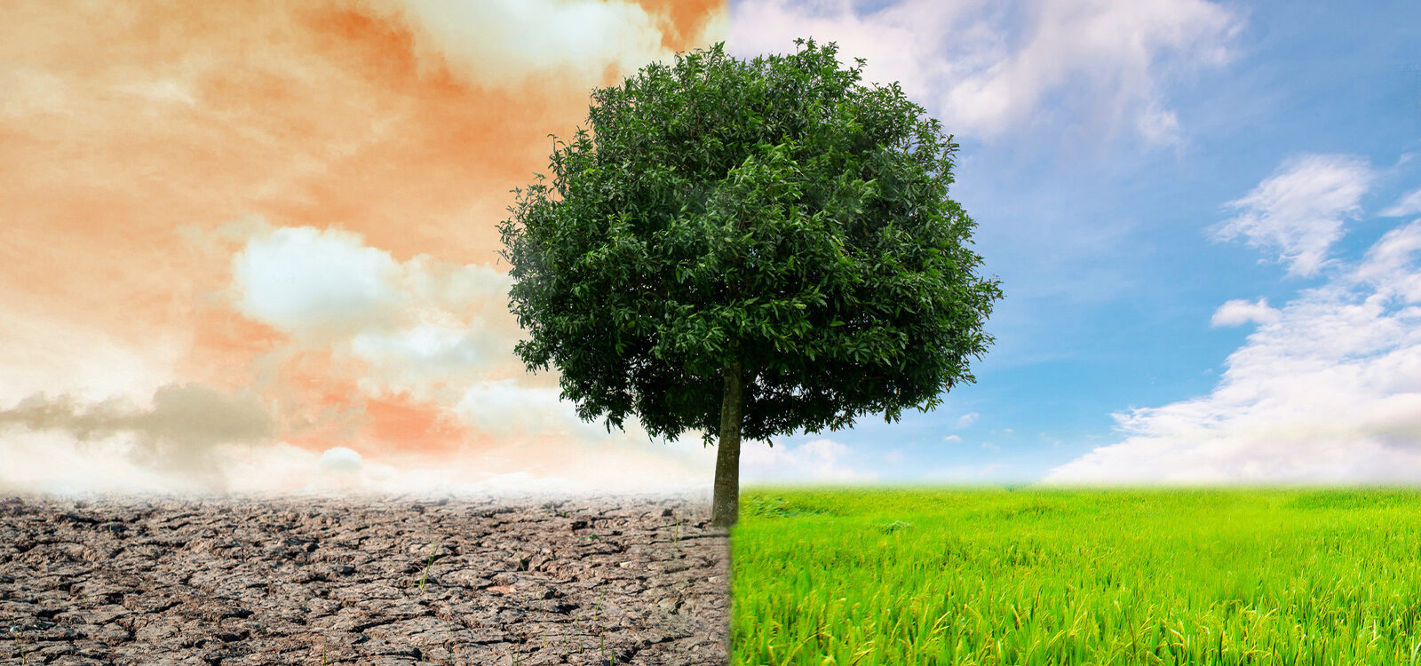 International Actuarial Association releases third paper in climate risk series